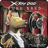 Tr9 - TRUE LOVES KISS - Michael Rubino - Xrcd073 - X-ray Dog
