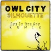 Owl City - Silhouette (Eye In The Sky Remix)