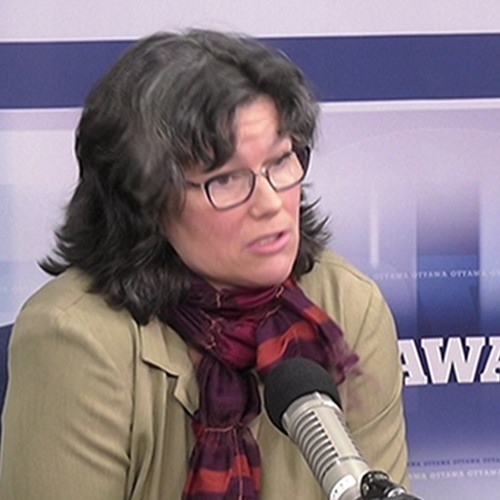 Translators discuss online program for federal workers