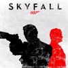 Skyfall - Adele - Samiir S Version