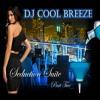 D.J. CoolBreeze Presents: Seduction Suite Part II