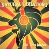 Natural Vibrations - Don't Dream It's Over