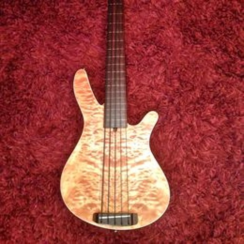 Fretless Rob Allen