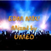 EDM MIX VOL.2
