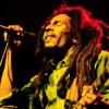 Bob Marley - Kaya (Live Dub Architect Mix)