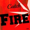 5 Seconds of Summer - Catch Fire - Live