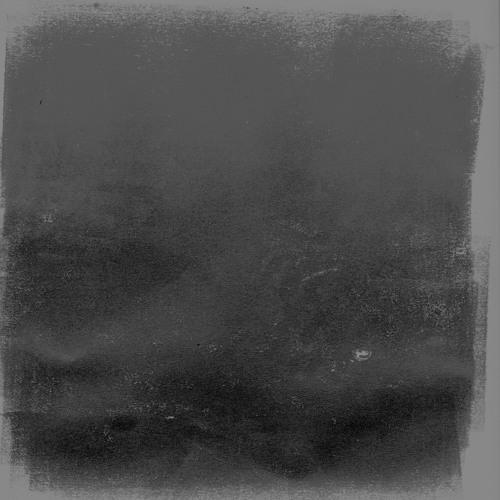 crow w/ no mouth (mix)