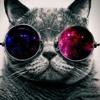 Watch me wip/fnaf remix mix