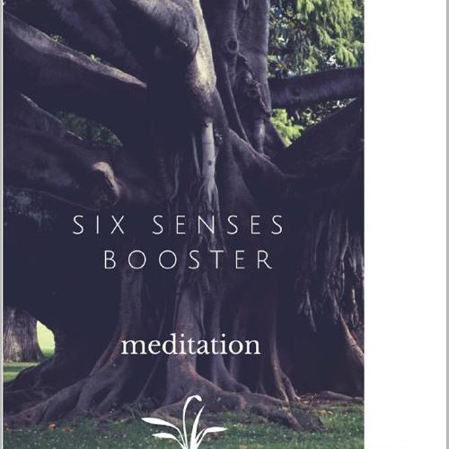 Six Senses Meditation