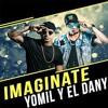 Yomil y El Dany - Imaginate