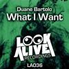 What I Want (Original Mix)