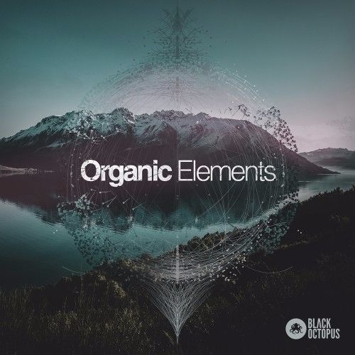 Black Octopus - Organic Elements