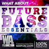 Future Bass Essentials [2GB+ Flume. Wave Racer Inspired Chillstep Samples, Presets, Kits]