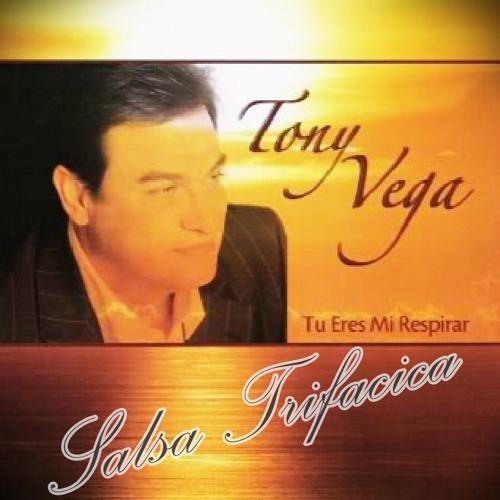 Ella Es - Tony Vega (Salsa Baúl)