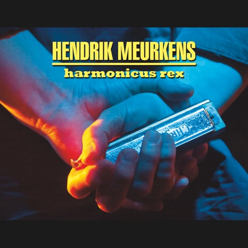 Hendrik Meurkens Falling In Love