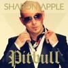 Culo (Sharon Apple Remix) - Pitbull Feat Lil Jon