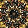 Kaleidoscope with Markey Funk 9.2.2016 - Just Another Winter Day
