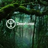 [L4M] Deep Forest - Forest Hymn (Luke Selfhood Forest Mix)