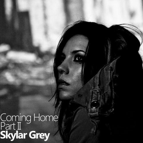 Skylar Grey - Coming Home (Jason Risk Cant Say No Bootleg)