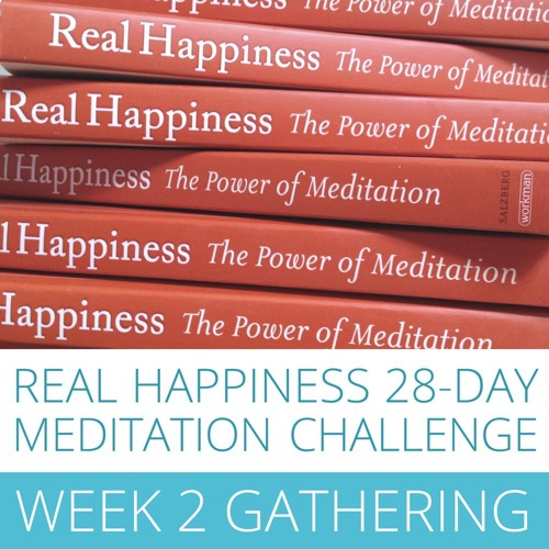 Real Happiness Meditation Challenge  - Week Two Gathering 2016