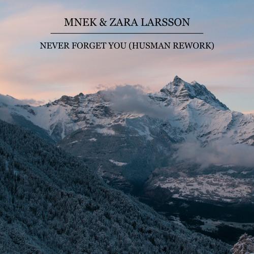 MNEK & Zara Larsson - Never Forget You (Husman Rework) скачать бесплатно и слушать онлайн