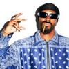 ► Snoop Dogg Type Beat - Doggy Funk