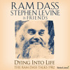 Dying Into Life with Ram Dass and friends preview 2