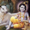Download vedas in hindi
