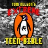 Christmas Lights by Tom Nelson's Extreme Teen Bible