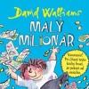 DAVID WALLIAMS - MALÝ MILIONÁR