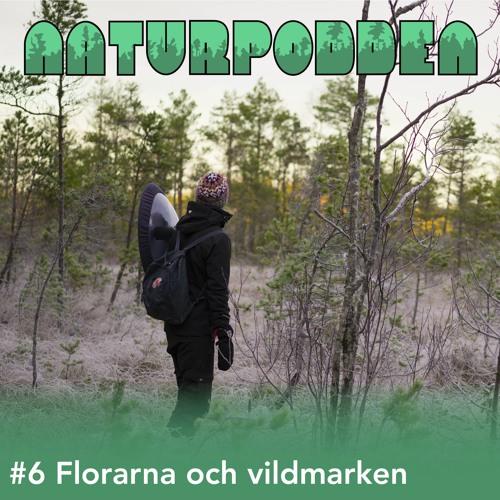 Avsnitt 6 - Florarna och vildmarken