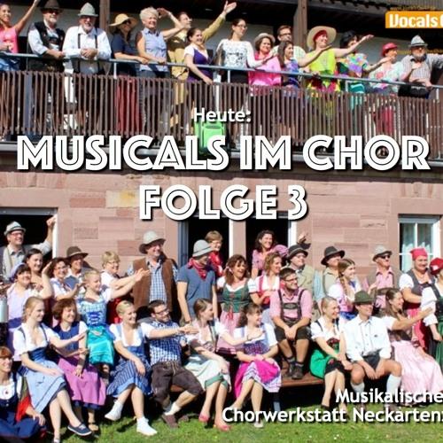 Seit 30 Jahren: Musicalproduktionen an der Hermann-Reiner-Realschule Neckarsulm