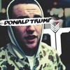 Donald Trump feat. Neon Hitch (Trivisio Remix)