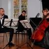 [CLASSICAL/CHAMBER MUSIC] Martinu Trio - 1st Mvmt