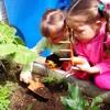 Podcast - Educação Ambiental