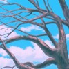Memories Never Change-Noragami Aragoto AMV