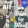 DJ Khaled - All I Do Is Win Vs. DJ Snake - Turn Down For What (feat. Lil Jon) (C...