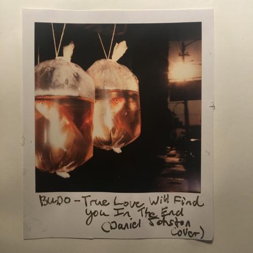 Budo - True Love Will Find You (Daniel Johnston Cover)