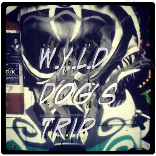 Wild Dogs Trip (dub vx mix)