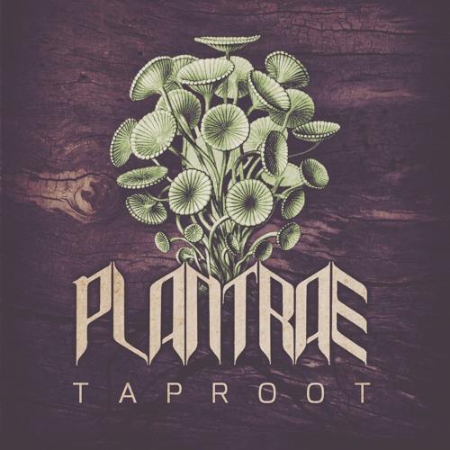 Plantrae - Tiaga Biome