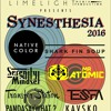 Synesthesia 2016 - 2 Stages - Silent Disco - Live Art - Cervantes Other Side - 2/20/2016