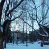 Snow Study/Estudo da neve