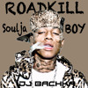 Soulja Boy & Dj Bachka - Turn My Swag On Remix (RoadKiLL)
