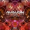 Ace Ventura Vs Symbolic - Prime Time (Avalon Rmx)