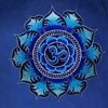 Om Shiva Lsd Voice ...rec LSDJ Lord Shiva Dj Psy Pushkar Records