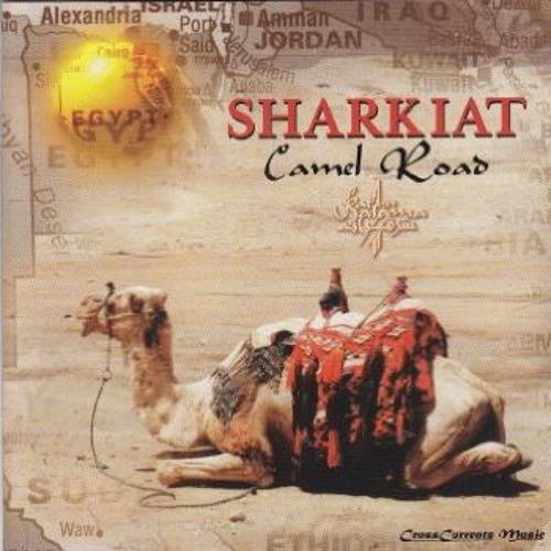 08-Sultany - 7/4 - Camel Road Album -Sharkiat (1996)