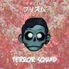 terror squad (PRXZM edit)