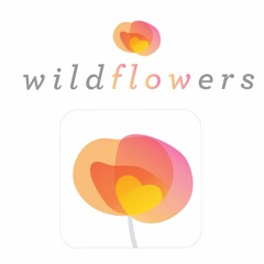 Wildflowers Guided Meditation - Feeling Good & Relax (ft. Norm)