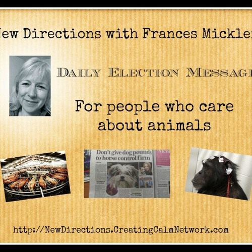 New Directions with Frances Micklem - Daily Election Messages - For Animal Lovers