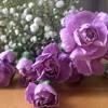 My Funny Valentine (Ella Fitzgerald)- Ellie Corne
